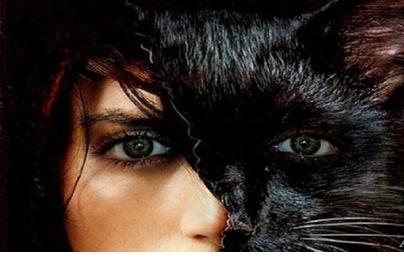 Женщина - кошка как образ любовницы у женатого мужчины