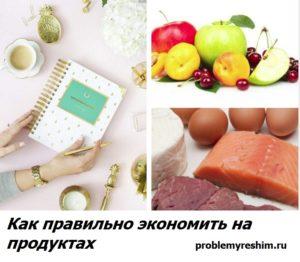 Как правильно экономить на продуктах - подпись под фото продуктов и журнала для учета финансов