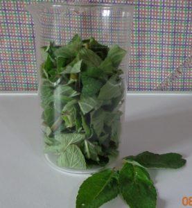 Как приготовить чай из мяты: рецепт с фото