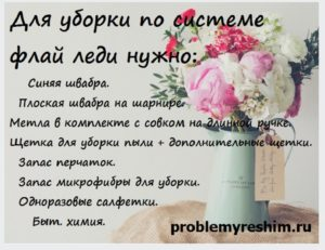 Список инструментов для уборки флай леди на фото вазы с цветами