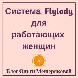 Система флай леди| flylady для работающих женщин: контрольный журнал, недельный план и рутины для облегчения работы по дому
