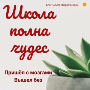 Цитаты на русском про школу и жизнь #mescher410